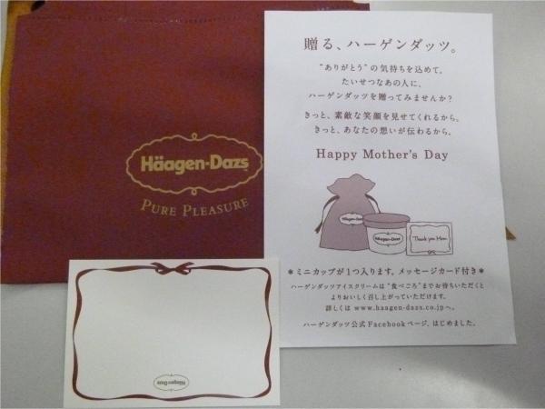 特性のギフトバッグとメッセージカード、使い方が書かれた説明書が封入されている。