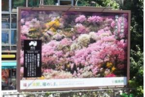 201410fukushima3