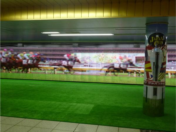 馬の走る映像。