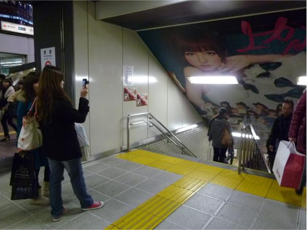 写真を撮るファンの姿が連日目撃された。