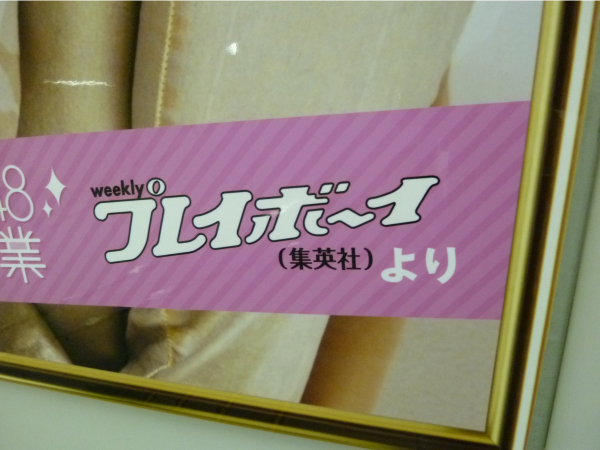 写真は、これまでに様々な雑誌やキャンペーンなどで使用されたもの。